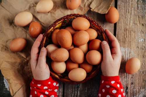 eggs are one of the most complete protein sources available