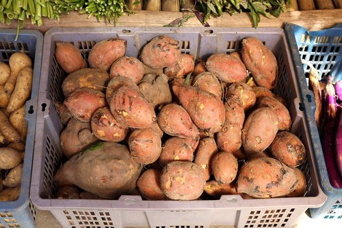 Sweet potatoes are impressively nutrient dense